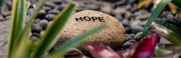 rock in garden engraved with the word HOPE