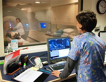 How We Diagnose Brain Tumors - Dana-Farber Cancer Institute