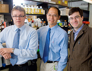 Clinicians and researchers (from left) Dr. Pasi Jänne, Dr. Kwok-Kin Wong, and Dr. Nathaneal Gray study new ways to treat drug-resistant non-small cell lung cancer.
