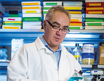 Massimo Loda, MD, Director, Center for Molecular Oncologic Pathology