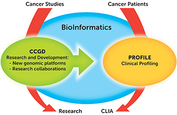 CCGD BioInformatics and Profile diagram