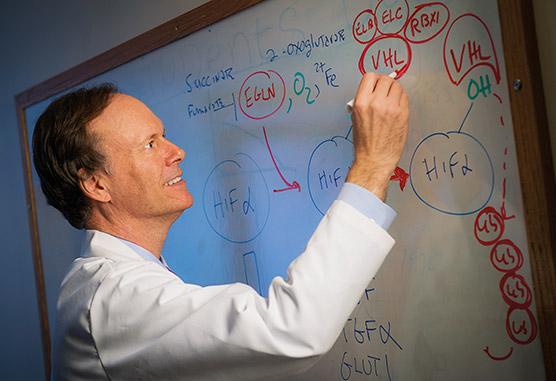 William Kaelin Jr., MD, at whiteboard