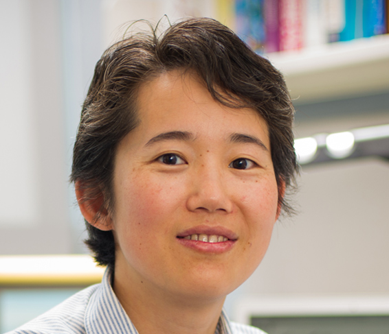 Xiaole Shirley Liu, PhD