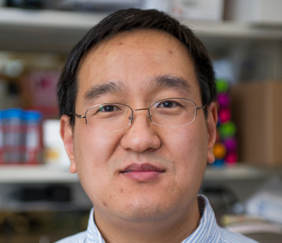 Baochun Zhang, MD, PhD