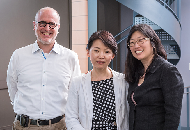 Keith L. Ligon, MD, PhD, Jean Zhao, PhD, and Nancy U. Lin, MD.