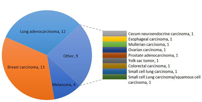 Collection of Metastatic Brain Tumor PDX/PDCL Models