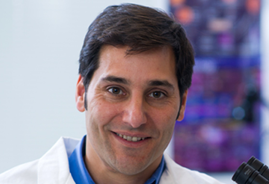 Carl Novina, MD, PhD