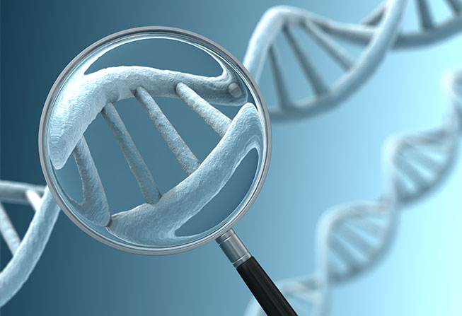 DNA and magnifying glass illustration